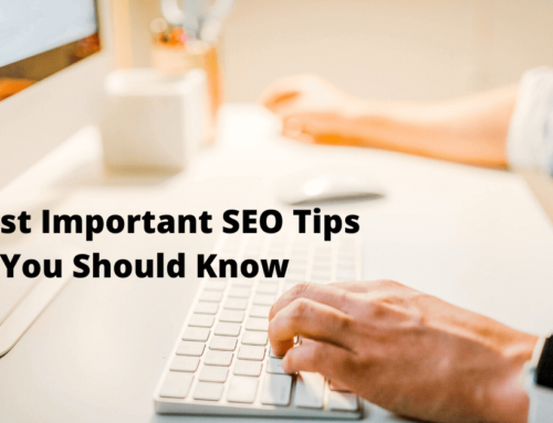 5 Most Important SEO Tips You Should Know